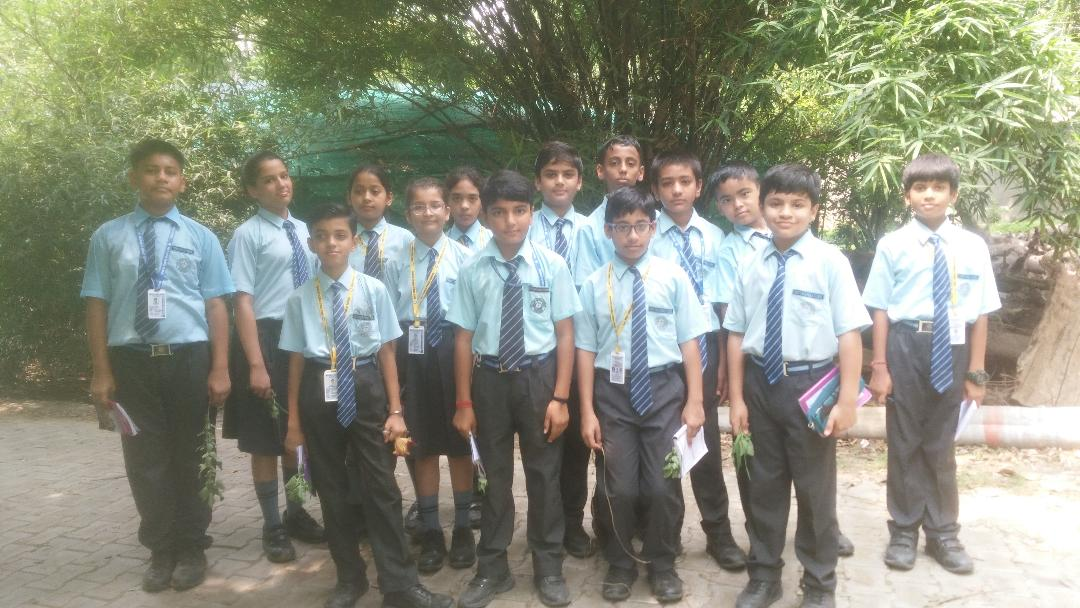Nursery Visit by class VII